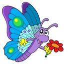 Mariposa-tecnica-metamorfica (1)